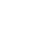 icon pilot-03